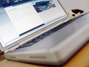 Hasznos lehet egy megbízható internetes munka fórum!